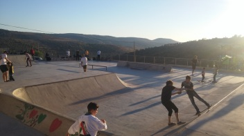 skatepal1-copy