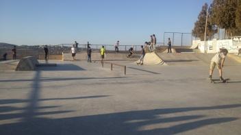 skatepal2-copy